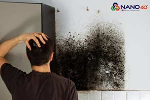 5 Sự cố thường gặp khi sơn nhà và cách khắc phục